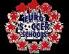 eurosoccerschools.png