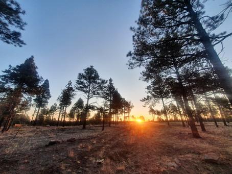 Great Western Loop: Days 1-4: Flagstaff to Pine