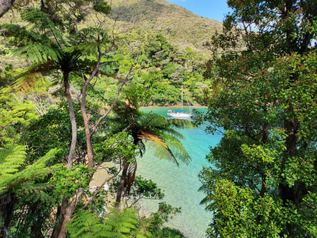 Te Araroa: Day 53-55