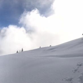 La 1ère neige / The winter is here