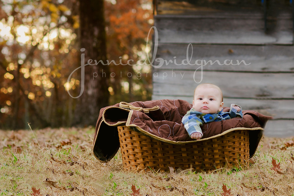 It's Time for Colorful Leaves! | Fall Photo Sessions | Conway AR Newborn, Maternity, and Wedding Photographer