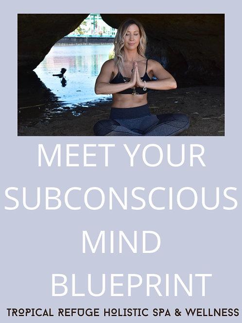 MEET YOUR SUBCONSCIOUS MIND BLUEPRINT