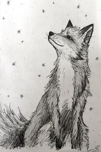 Fox - 2018