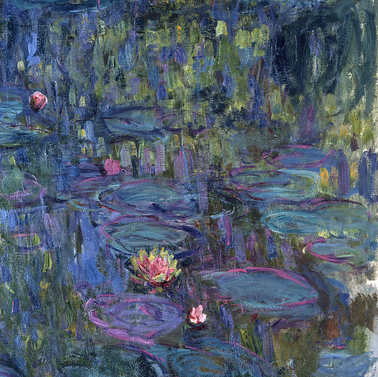 Nymphéas - Monet