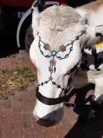 Kopfschmuck Kuh Kundenbild.jpg