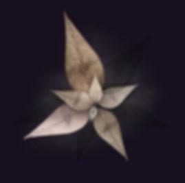 jai-sol-art-spiritual-crownseed