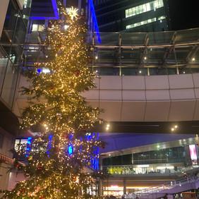 渋谷のクリスマスツリー