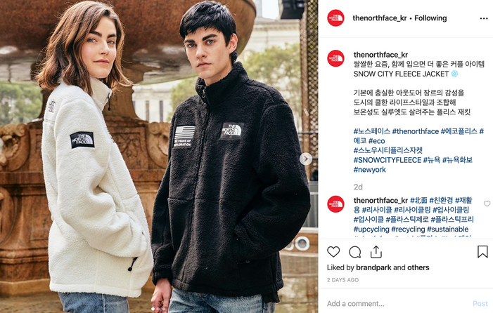 Cosmic Modesty x Northface 에코플리스
