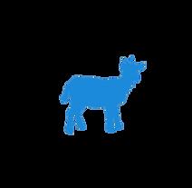 goat - cenzone europe.png
