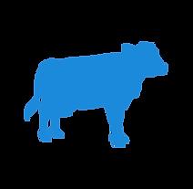 dariy cow - cenzone europe.png