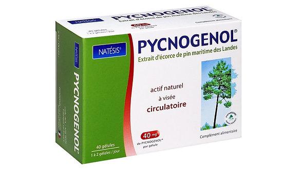 Natésis | Pycnogenol® | 40 Caps/Box