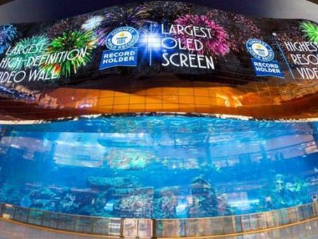OLED-дисплей от компании LG попал в Книгу рекордов Гиннеса как самый большой дисплей в мире