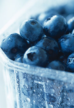 Blueberries are the Star Fruit. The Blueberry is a super food.