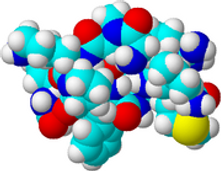 Substance P (SP) Is An Important Element In Pain Perception.http://www.forgetthepain.com/#!substance-p-sp/c1g2q