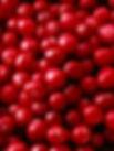 Cranberries  A Huge Favorite. http://www.forgetthepain.com/#!craving-cranberries/c1hja