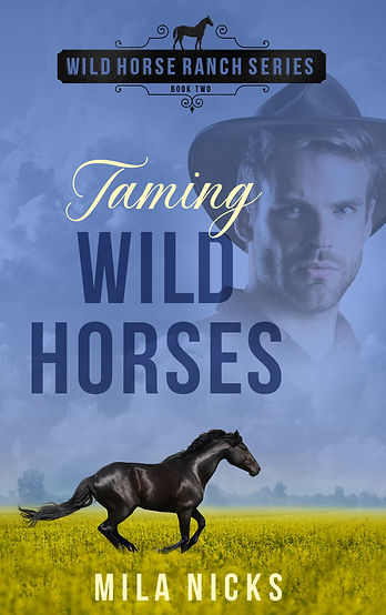 TamingWildHorses_ebook.jpg