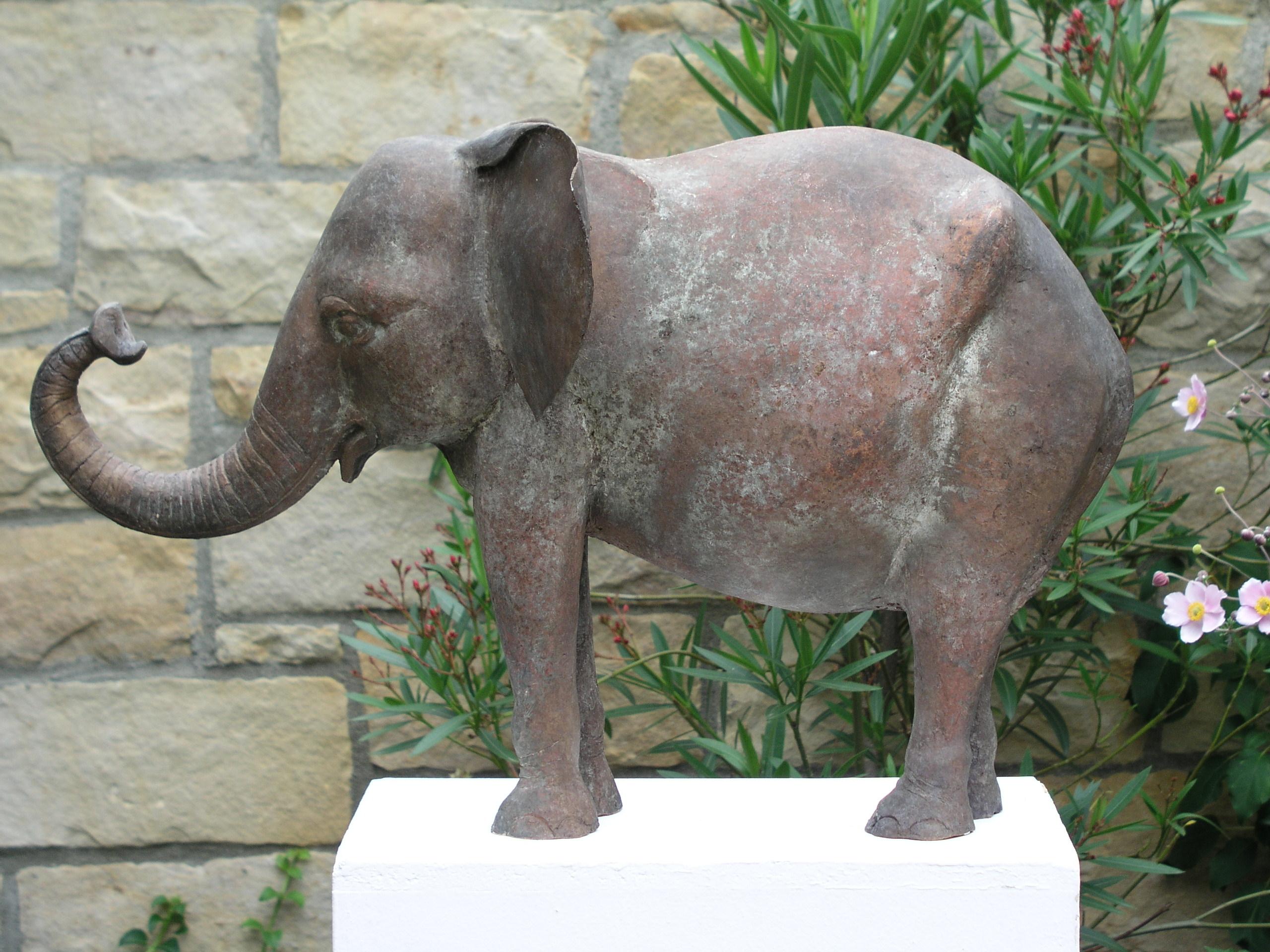 Kuh Hahn Elefant 08.2004 005
