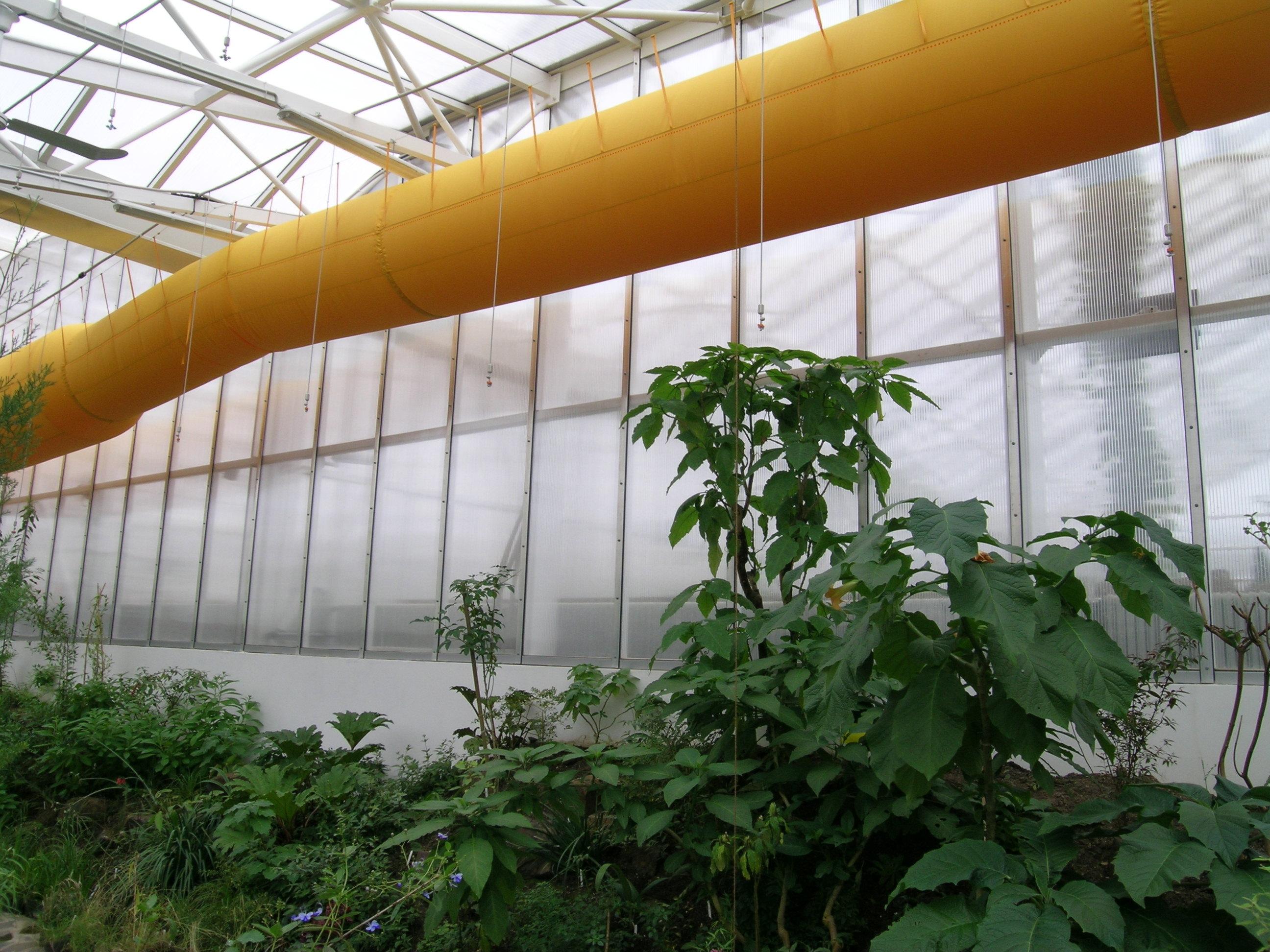 Növényház fűtése