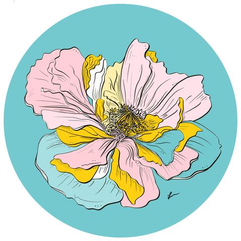 Wildflower_edited.jpg