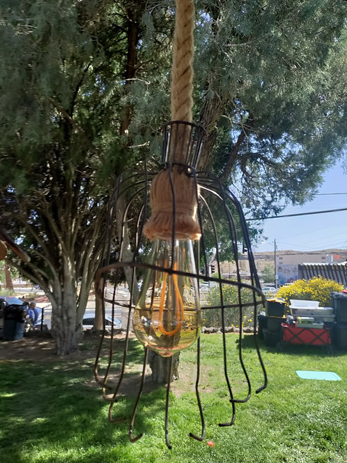 Apple Picking Hanging Light with Rope