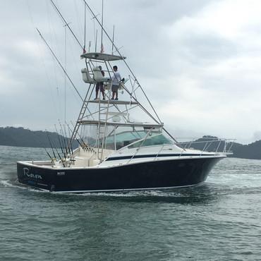raven-costa-rica-30-e1522852447471.jpg