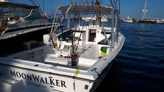 Monnwalker. Quepos Fishing