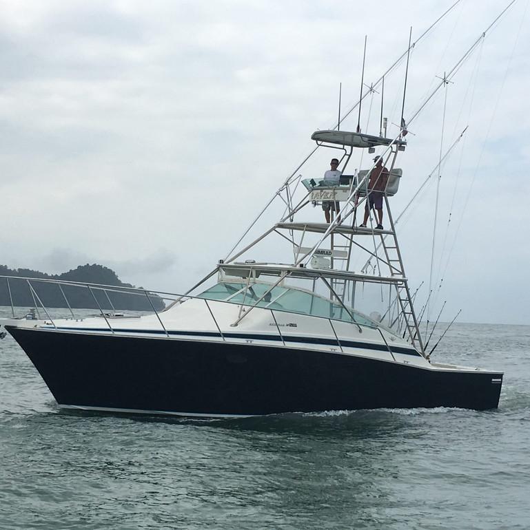 raven-costa-rica-25-e1522852500180 (1).j