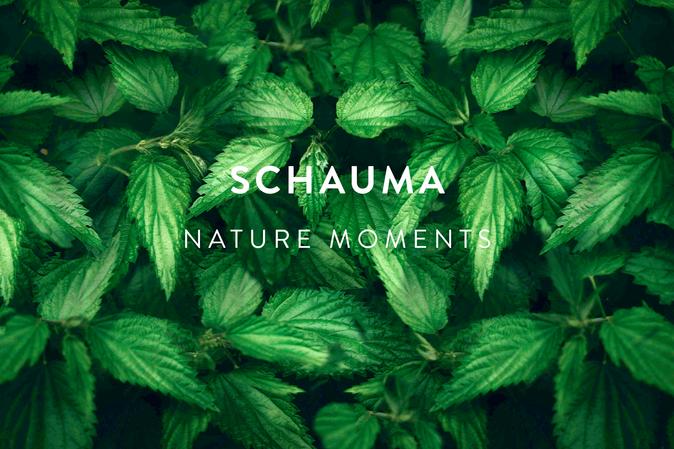 SCHAUMA NATURE MOMENTS