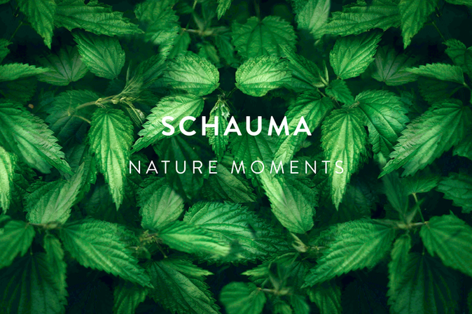 SCHAUMA NATURE MOMENTS