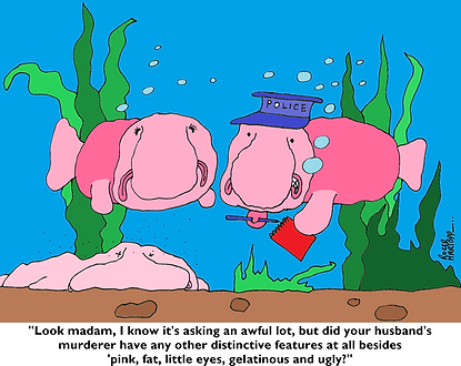 blobfish cartoon
