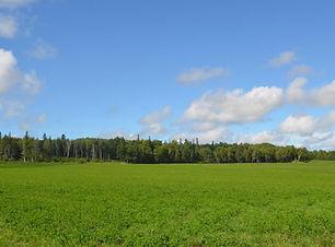 hendrickenfarm.jpg