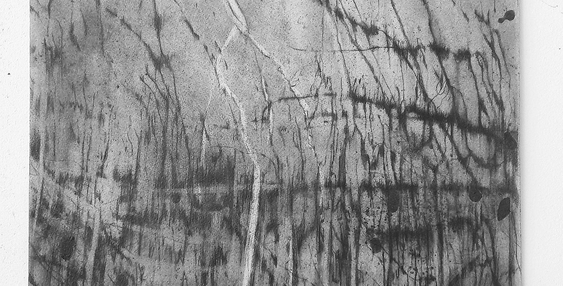 François Réau, 2018-2019, Et ce qui s'enflamme II,  mine de plomb et graphite sur papier, 46 x 38 cm