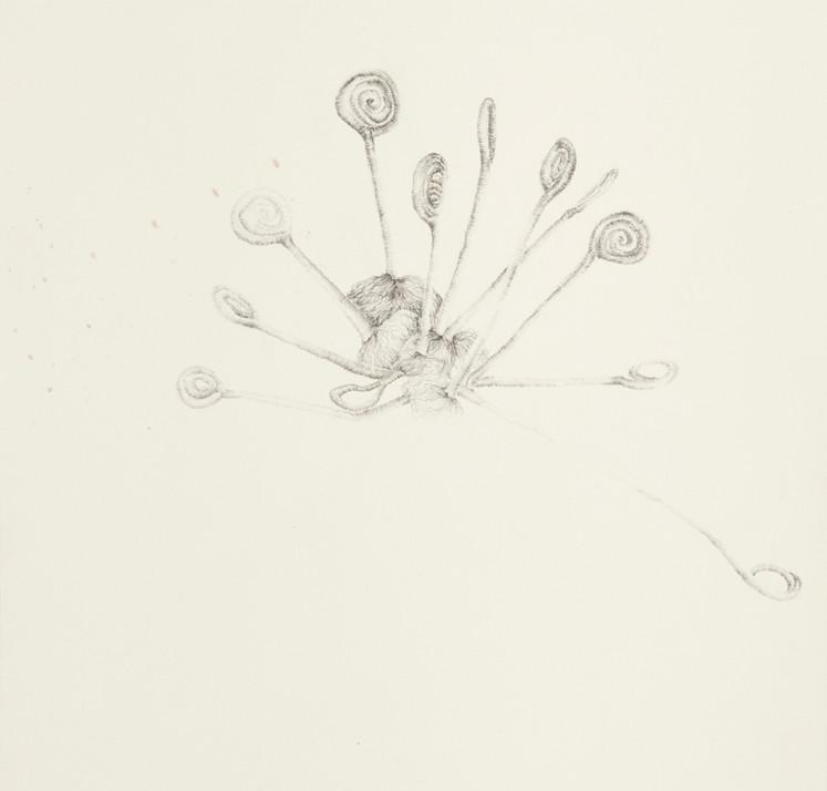 Temitayo Ogunbiyi, 2020, You will find new direction from suprises, crayon sur papier herbarium, 29,2 x 41,9 cm
