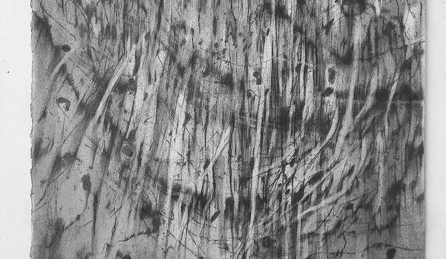 François Réau, 2018-2019, Et ce qui s'enflamme III,  mine de plomb et graphite sur papier, 46 x 38 cm