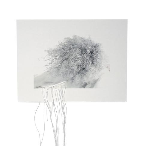 """M'barka Amor, 2020, """"Now I'm White / Prolongement"""", tissage de fil de soie, impression numérique sur papier rag fine art, 15 x 20 cm"""