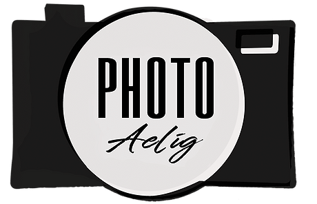 logo aelig.png