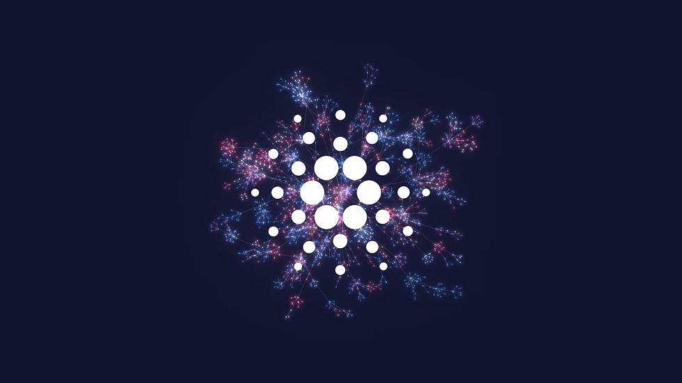 Cardano Photo 1.png