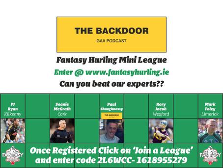 Fantasy Hurling and Fantasy Gaelic Football gaining attraction among GAA fans