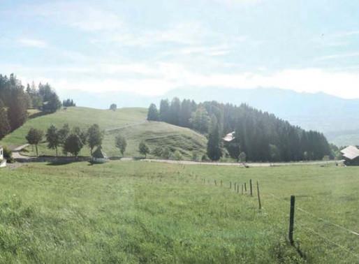Alpe Furx - eindrucksvolles Urlaubserlebnis auf 1140 m