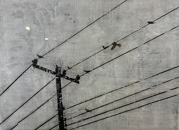 "Birds On a Wire 24x30"""