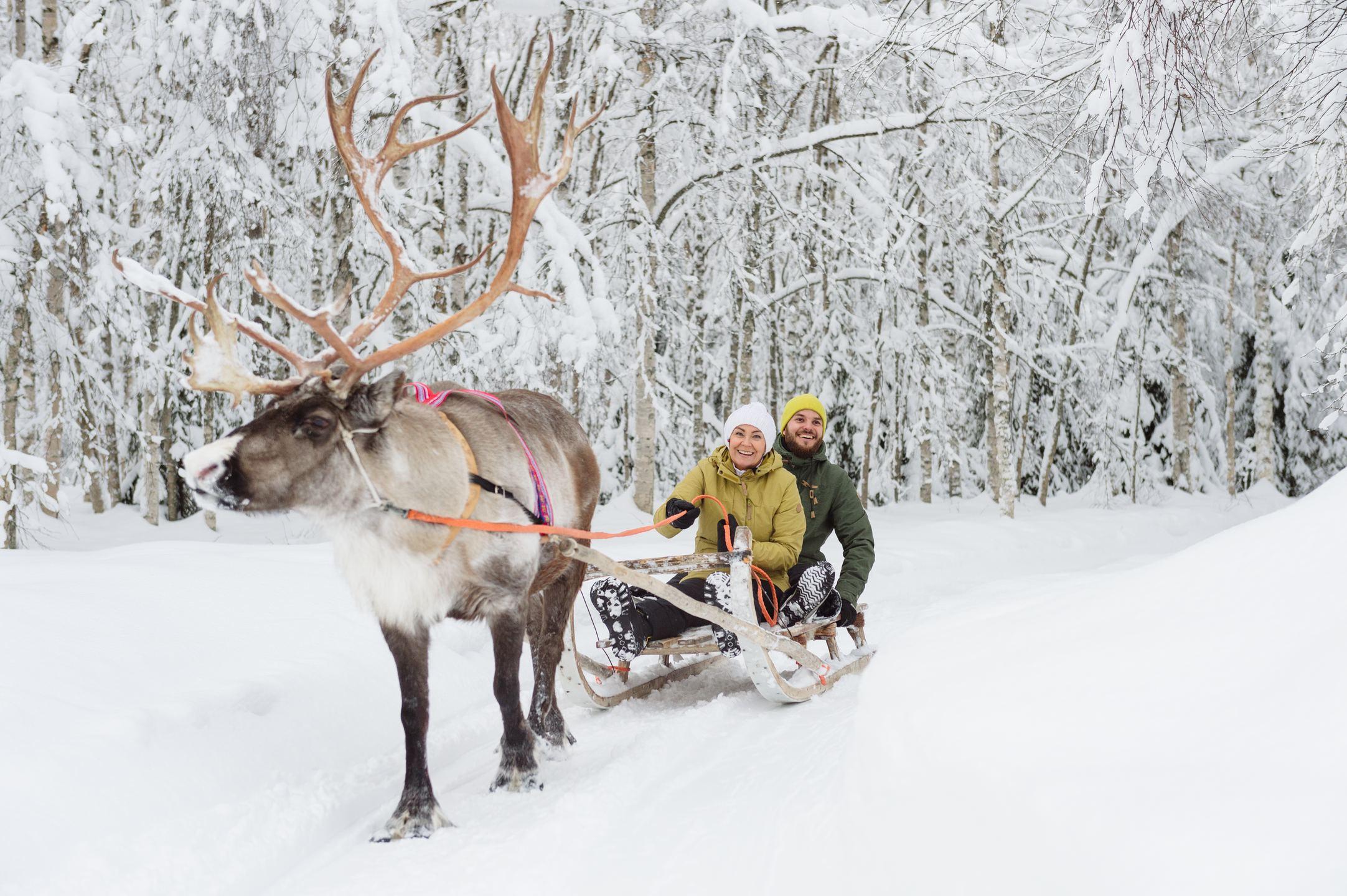 Reindeer_ride