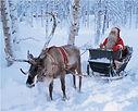 reindeer safari Santa