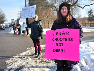 Second lawsuit over Ann Arbor cull