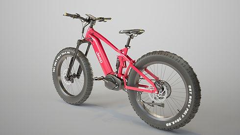 red%20cycle%208_edited.jpg