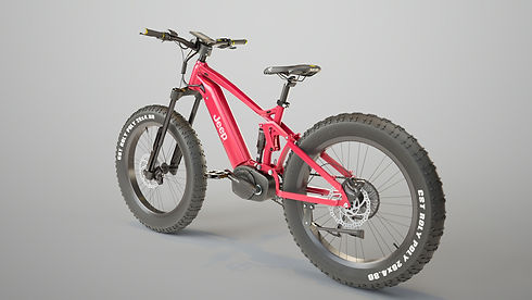 red cycle 8.jpg
