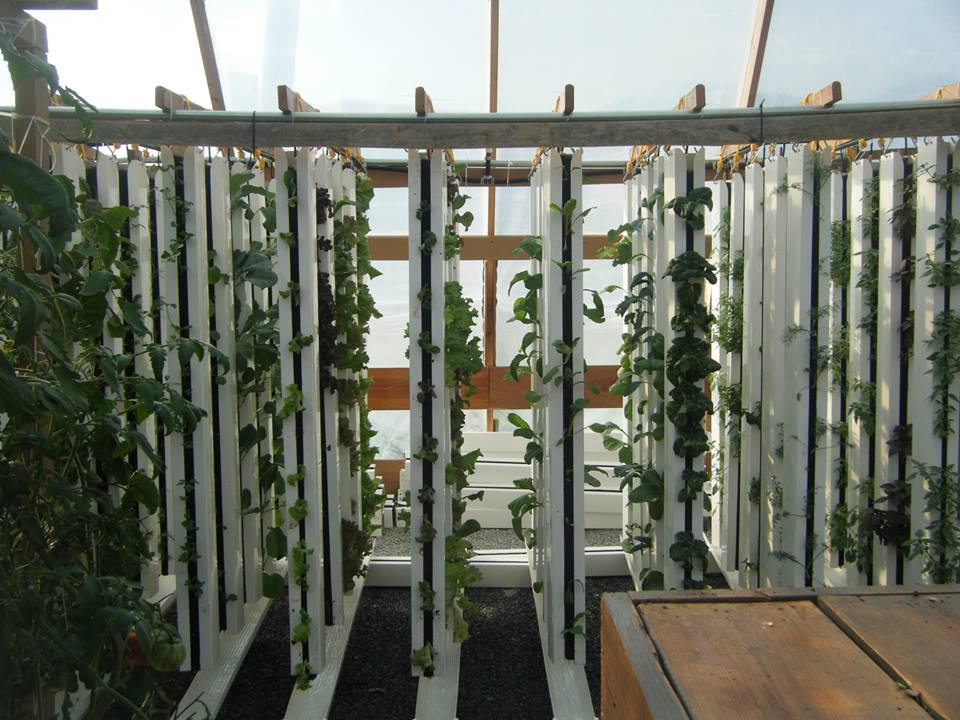 Grow Towers at Pulaski Grow
