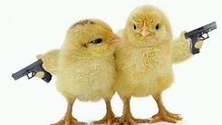 naked-chicks-with-guns_edited_edited.jpg