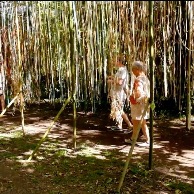 arbreafrolerlille-1.jpg