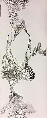 dessin sophie web.jpg