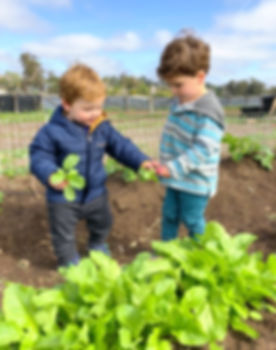 Children Farming